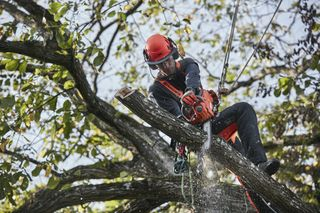 Arborist trousers and T535i XP